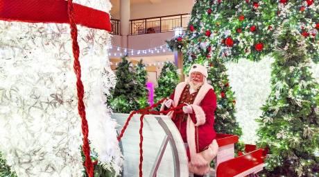 willow grove park mall santa 2019