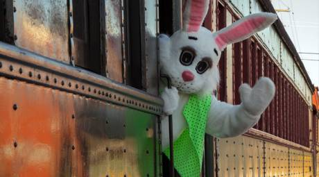 EASTER EVENTS - EASTER BUNNY EXPRESS