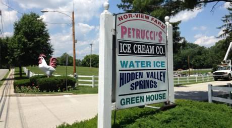 PETRUCCI'S ICE CREAM