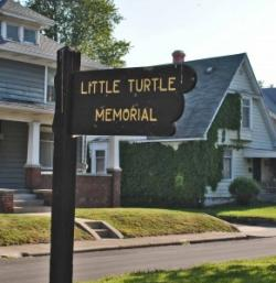 Little Turtle Sign 292x300