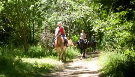 Natural Valley Ranch guided trail ride