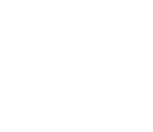Discover Lehigh Valley Stacked White Logo
