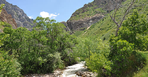 Rock Canyon 500 x 261