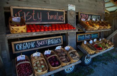 Veggie Wagon
