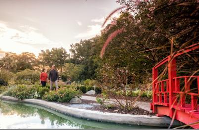 NHC Arboretum Ad Shoot not cropped