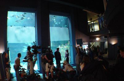 Dawson's Creek Films at Aquarium