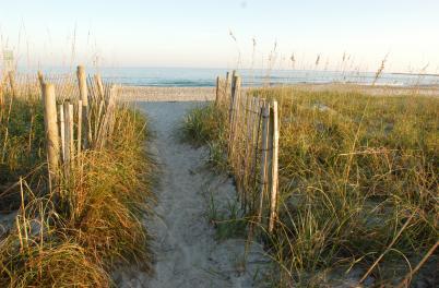 Beach access path