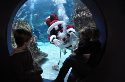 Santa by the Sea round window