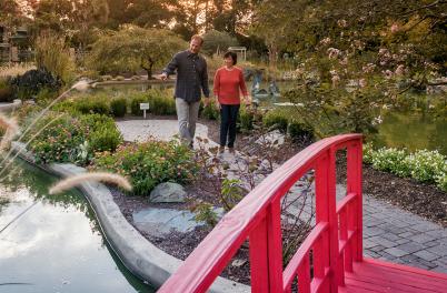 NHC Arboretum Japanese garden