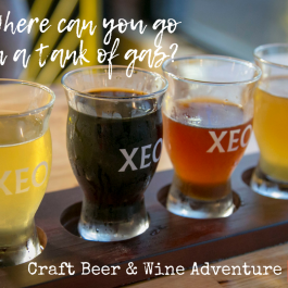 Craft Beer & Wine Trail Adventure