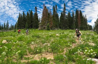 2A Trails Mountain Biking