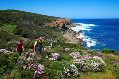 Cape to Cape hiking trail