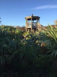 Ponce Preserve Observation Tower near Daytona Beach