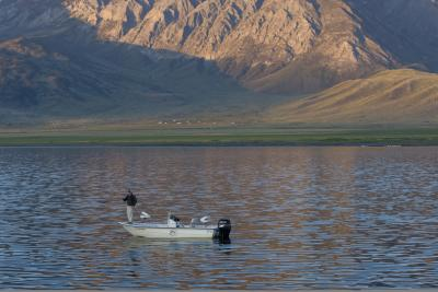 Fishing crowley Lake