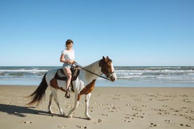 Horseback Riding OBX