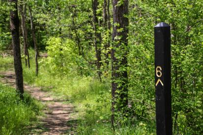 A trail at Charlestown State Park winds past mile-marker six.