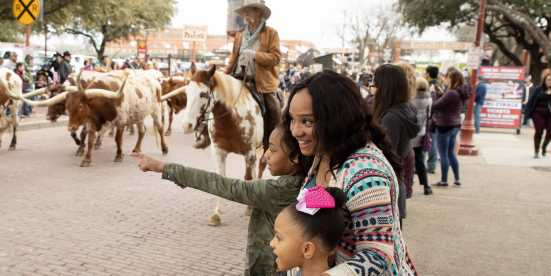 Stockyards Blog