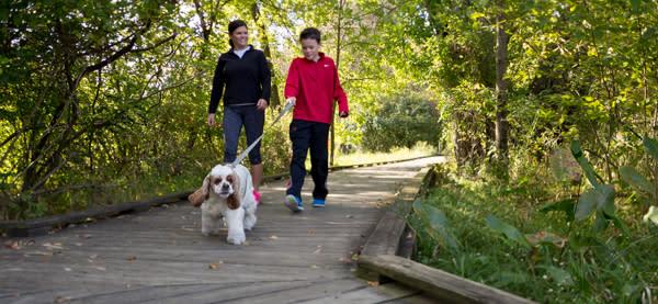 Wildwood Boardwalk Family Walking Dog - Free Things To Do
