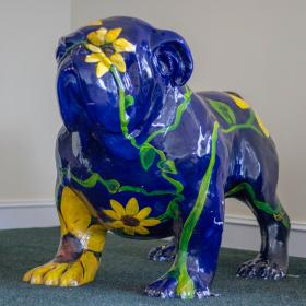 Sunflower Dawg