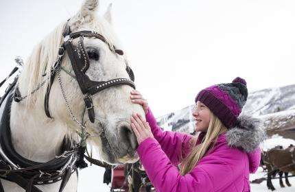 Girl petting horse before sleigh ride at Park City Mountain
