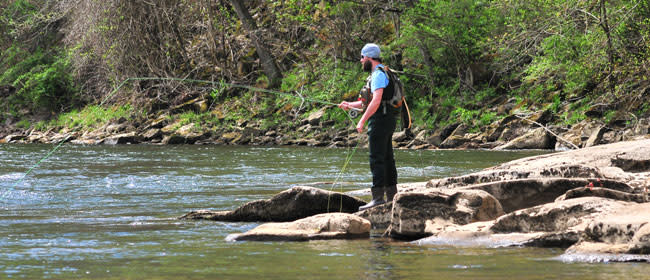 Fly Fishing on the Yough