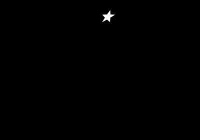 Rising Stars Logo (Black)