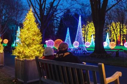 Winterlights at Newfields (Photo courtesy of Newfields Facebook page)