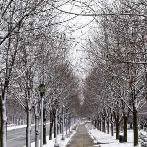 Headwaters Park in Winter