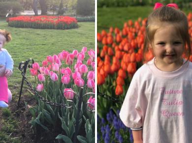 Katie O'Malley Maloney Tulip Queen Header