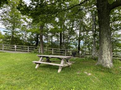 John Boyd Thacher State Park picnic table