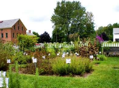 Shaker Heritage Society Garden header