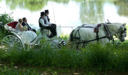 Loon Meadow Wedding