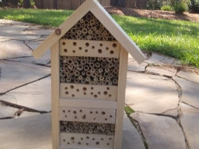 Bee Hotel at Halyburton Park