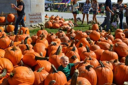 Beasley's Heartland Apple Festival boy with pumpkins