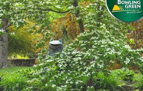 Baker Arboretum Video Call background