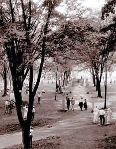 A photograph from the 1920s of a Rose Island walkway.