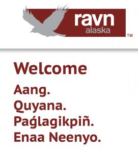 Ravn-Air-box-271x300