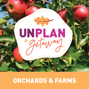 Unplan Orchard and Farms