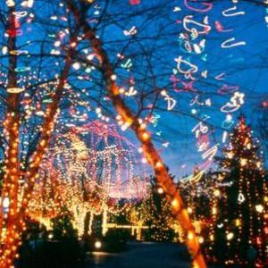 Franklin Park Conservatory Christmas Lights.12 Holiday Lights Shows Illuminating Columbus