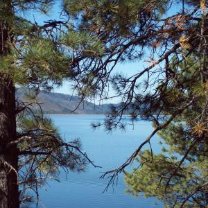 Vallecito Lake