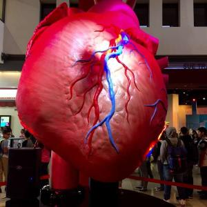 The Health Museum_Teen Summit
