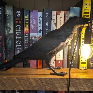 A crow light on a shelf of books at the Crow & Co. Bookstore in Hutchinson