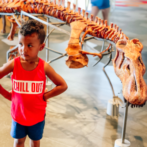 Kids At Museum In Overland Park