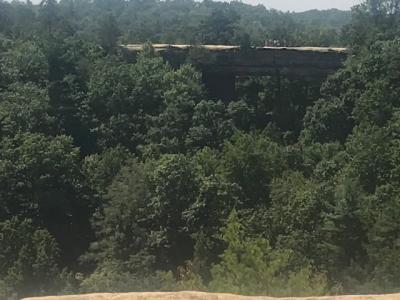 Natural Bridge view