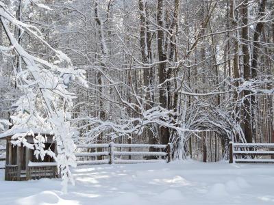 Cumming Nature Center in winter
