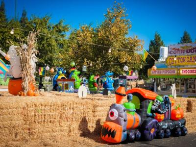 The Grove pumpkin patch clovis