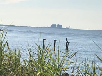 Pointe Park Pascagoula - Karen H Dawson