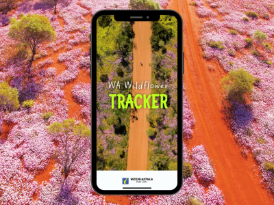 WA Visitor Centre launches free Wildflower Tracker app