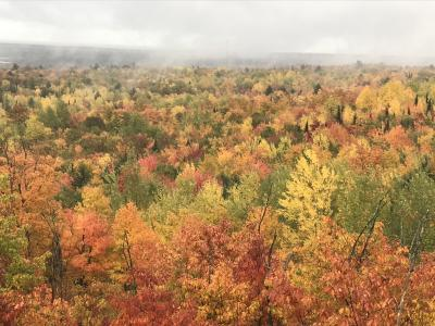 Seasons of Mists and Mellow Fruitfulness