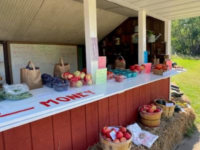 Farm Stand at Sleeping Bear Orchards